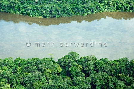 Aerial view of Amazon rainforest