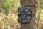 Click to see details of Wildlife camera trap