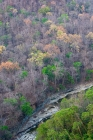 Click to see details of Alaungdaw Kathapa National Park, north-west Burma (Myanmar)