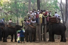 Click to see details of Burmese tourists taking elephant rides