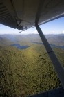 Click to see details of The Great Bear Rainforest