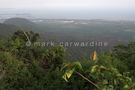Bokor National Park, Elephant Mountains, south-western Cambodia