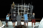 Click to see details of Cage-diving for great white sharks