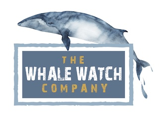 The Whale Watch Company