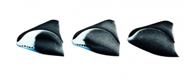 Image of Bowhead whale (Balaena mysticetus) - Chin variations